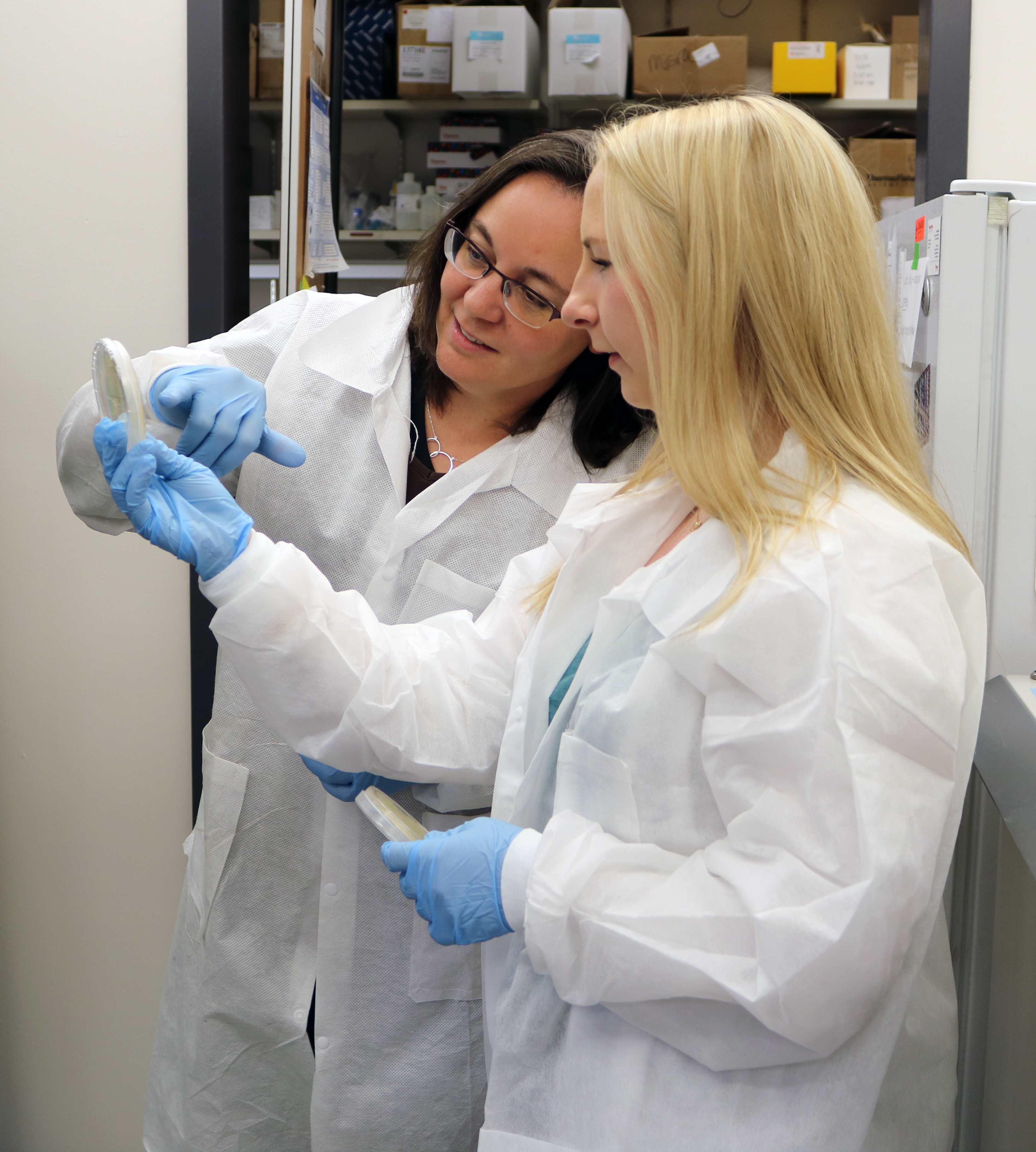 Students working with faculty in the lab