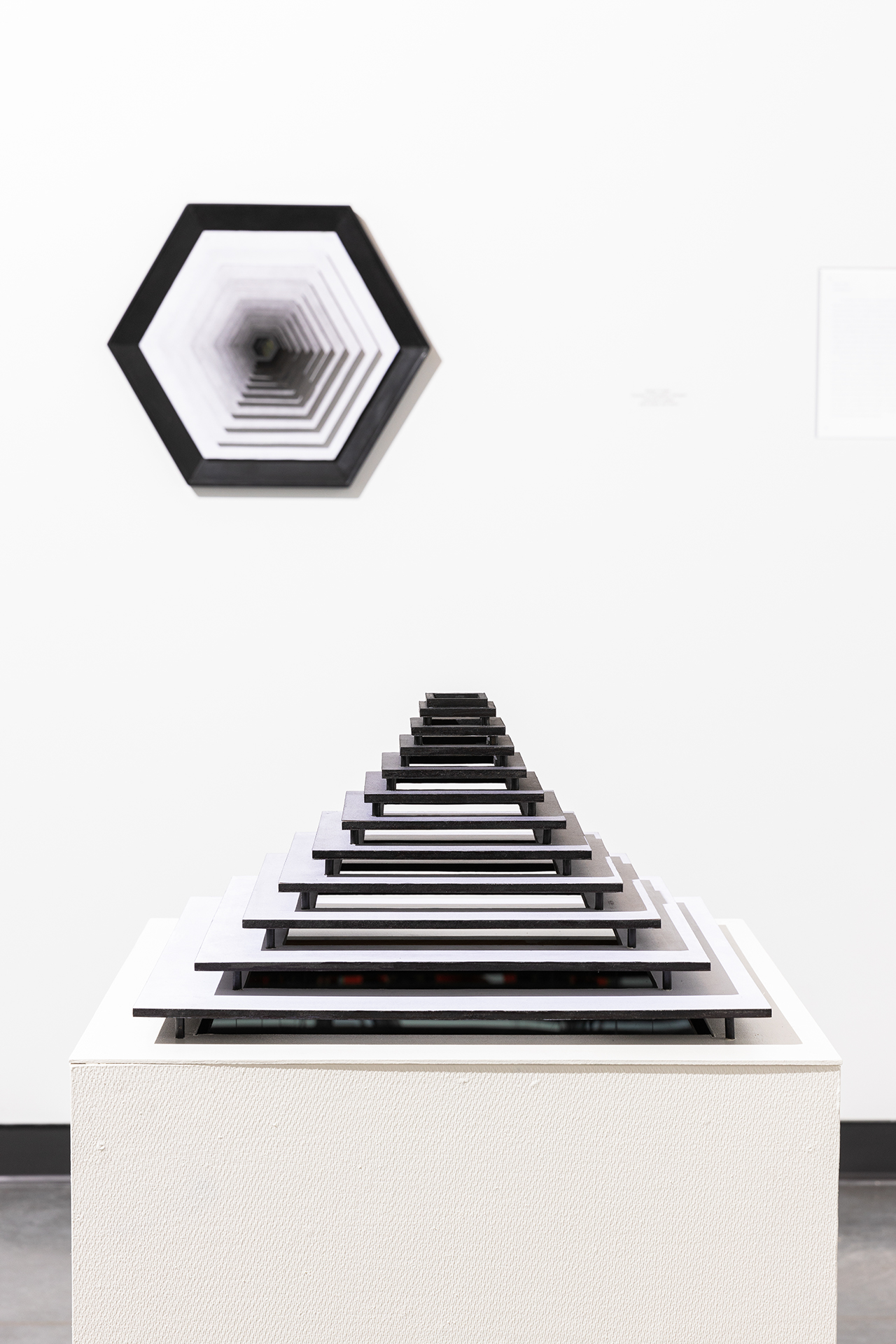Paradox of Perception; Hexagon and Cube installation.