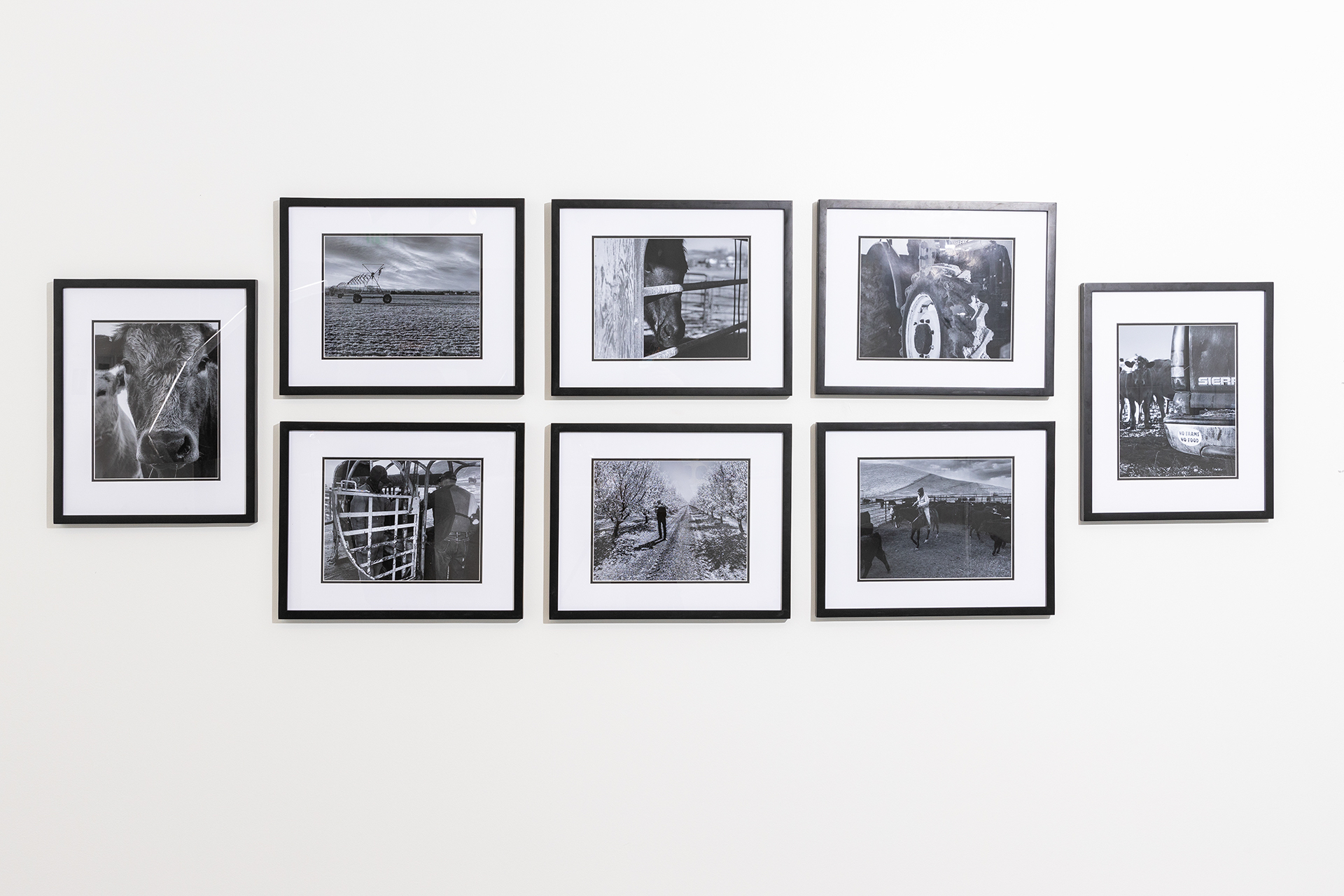 Kayla Ketchie black and white digital print installation on gallery wall