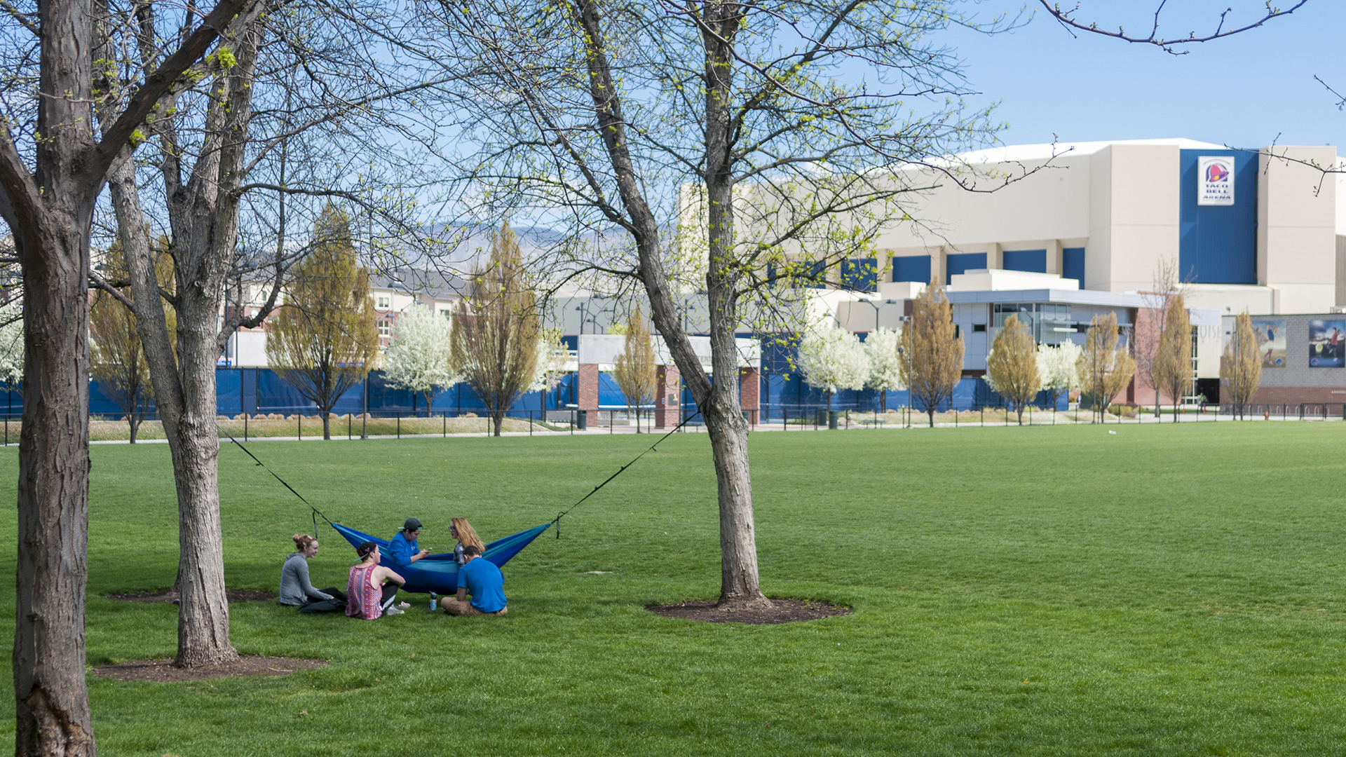 Relaxing on campus