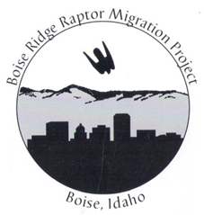 old logo from the boise ridge raptor migraiton project shows a silhouette of a falcon flying over the Boise skyline and mountains