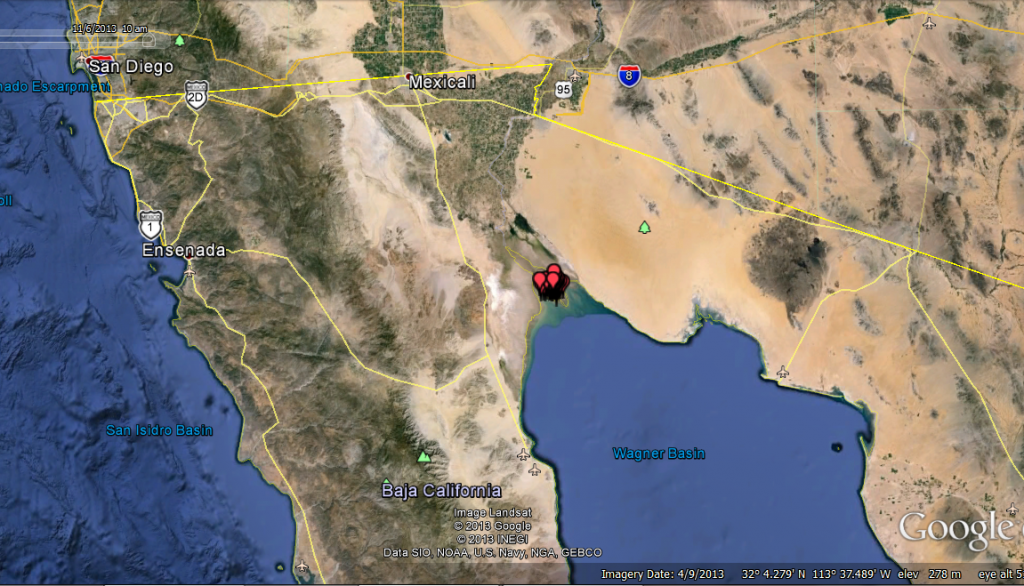 Borah had been spending most of his time in an estuary near the Gulf of California