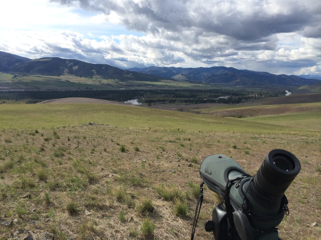 MPG Ranch. Not a bad place to look for curlews! Photo by Jay