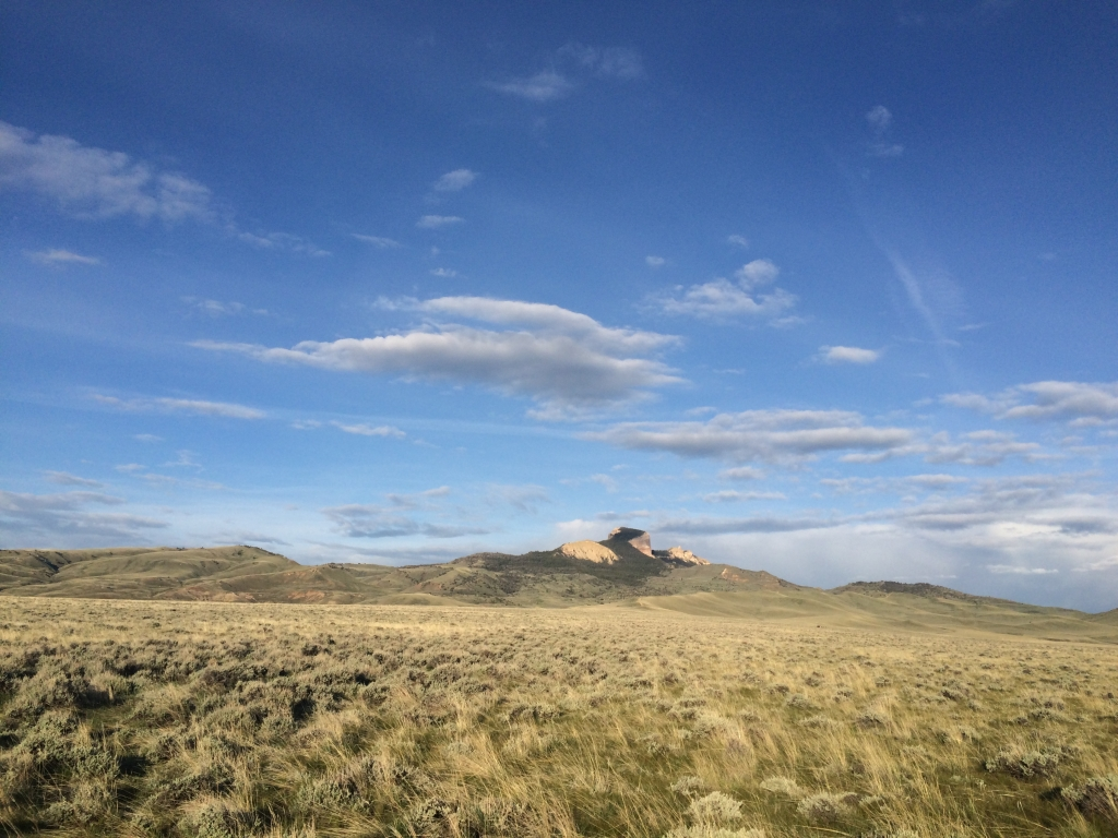 View across curlew breeding habitat to Heart Mountain, Wyoming