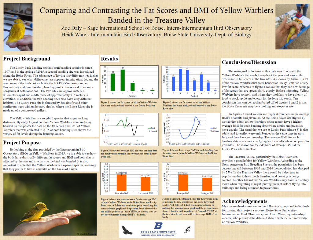 Poster showing graphs of Yellow Warbler fat levels. Yellow Warblers were fatter at the Boise River than at Lucky Peak
