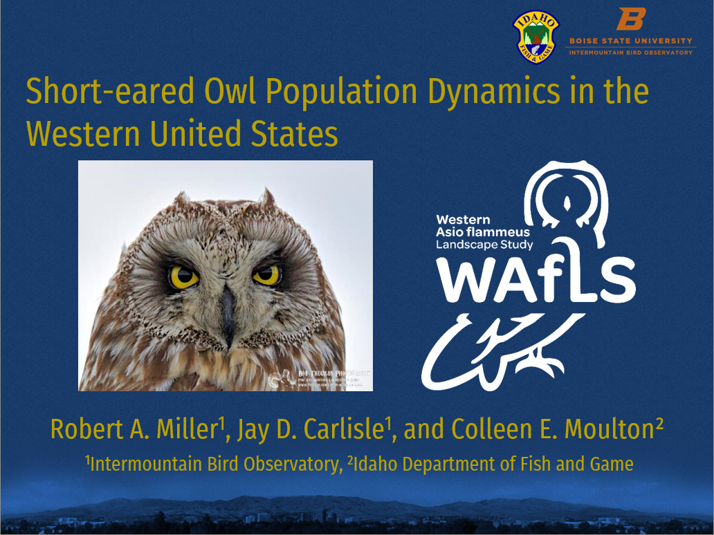 "a screens hot of a powerpoint presentation title slide with the Project WAfLS logo and title ""Short-eared Owl population dynamics in the western united states"""