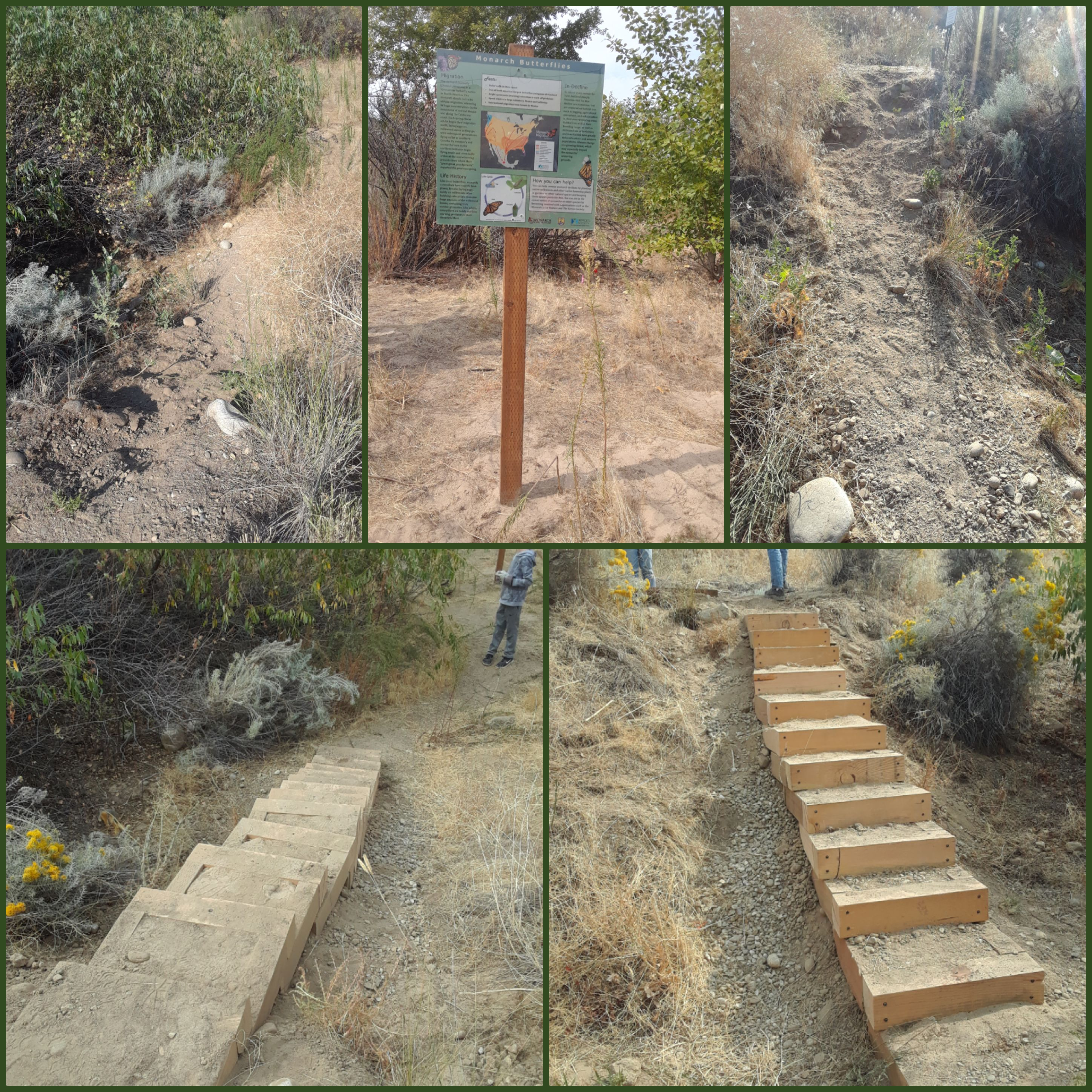 a photo collage of wooden steps installed in a hillside including before and after photos