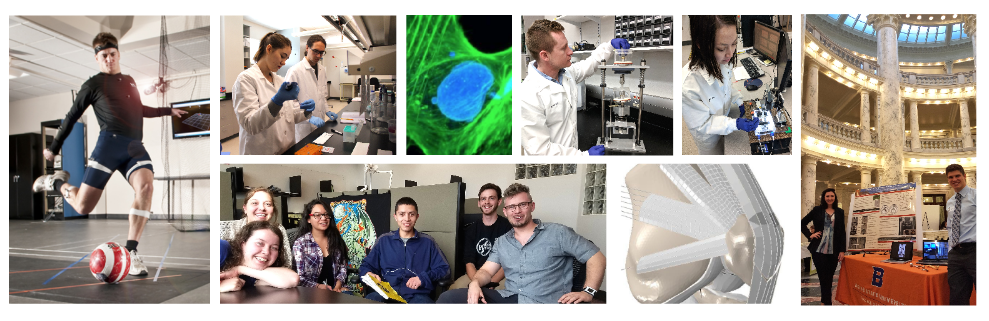 collage of biomedical students and resources