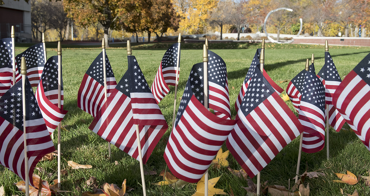Photo American flags on wooden sticks covering the lawn
