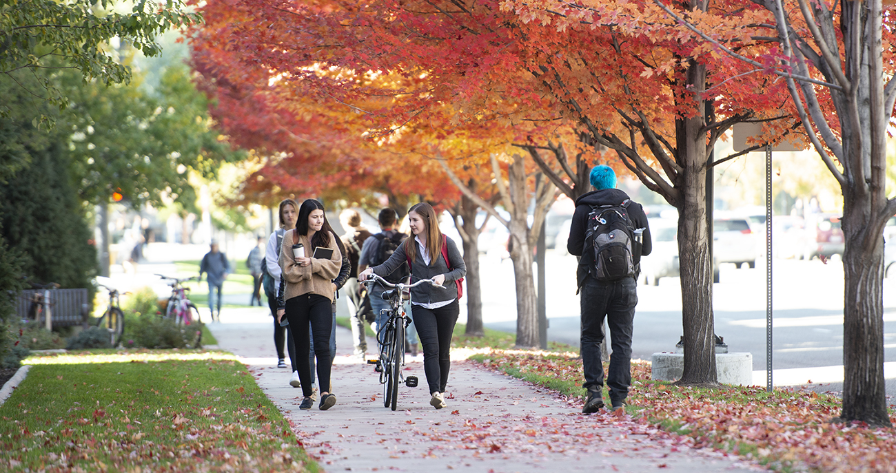 Photo of campus walkway in the Fall with colored leaves on the tress
