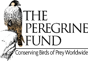 The Peregrine Fund logo with picture of bird and tagline Conserving Birds of Prey Worldwide