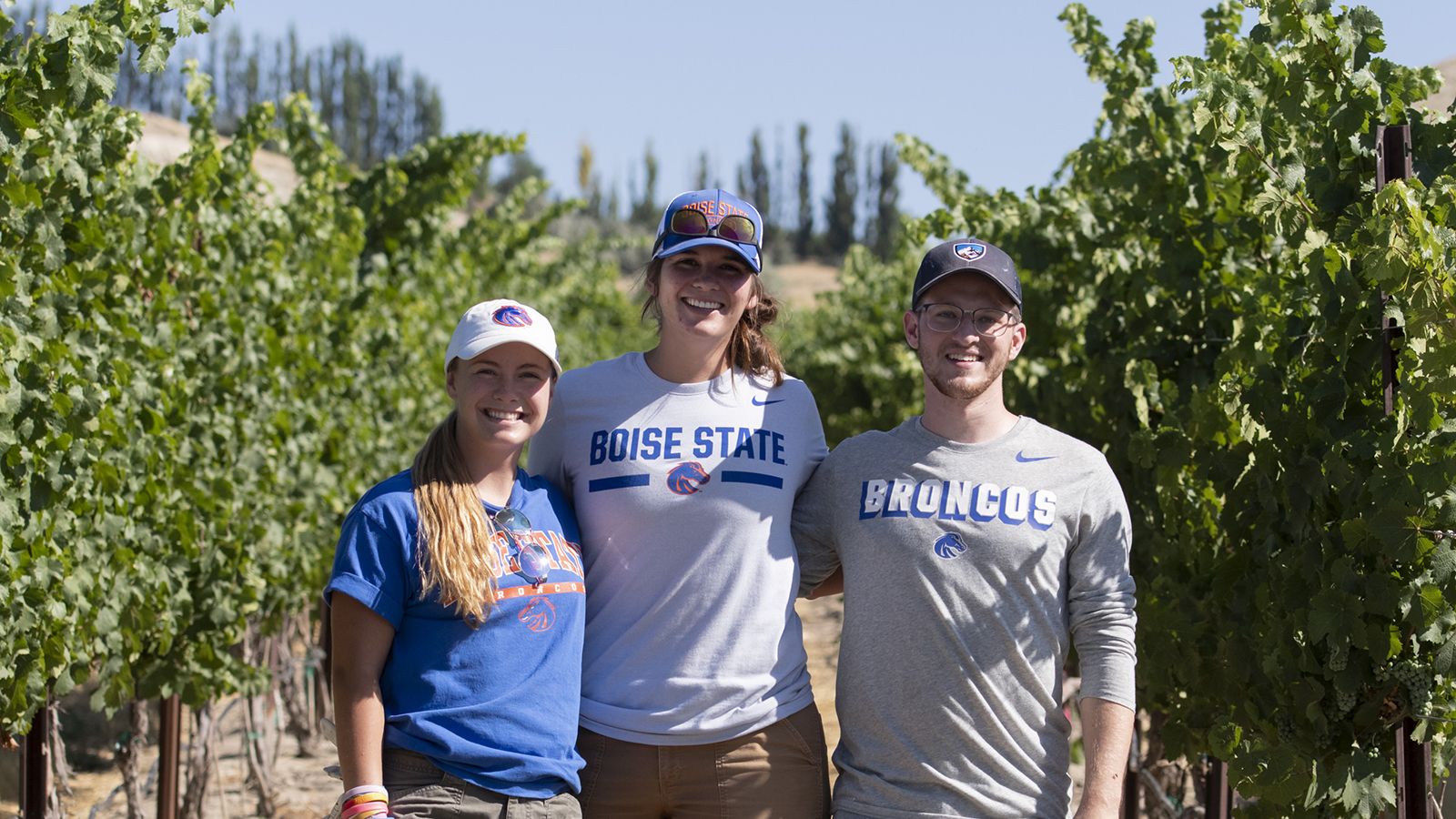 Three students stand side by side in vineyard