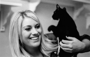 Student volunteering at animal shelter with cat