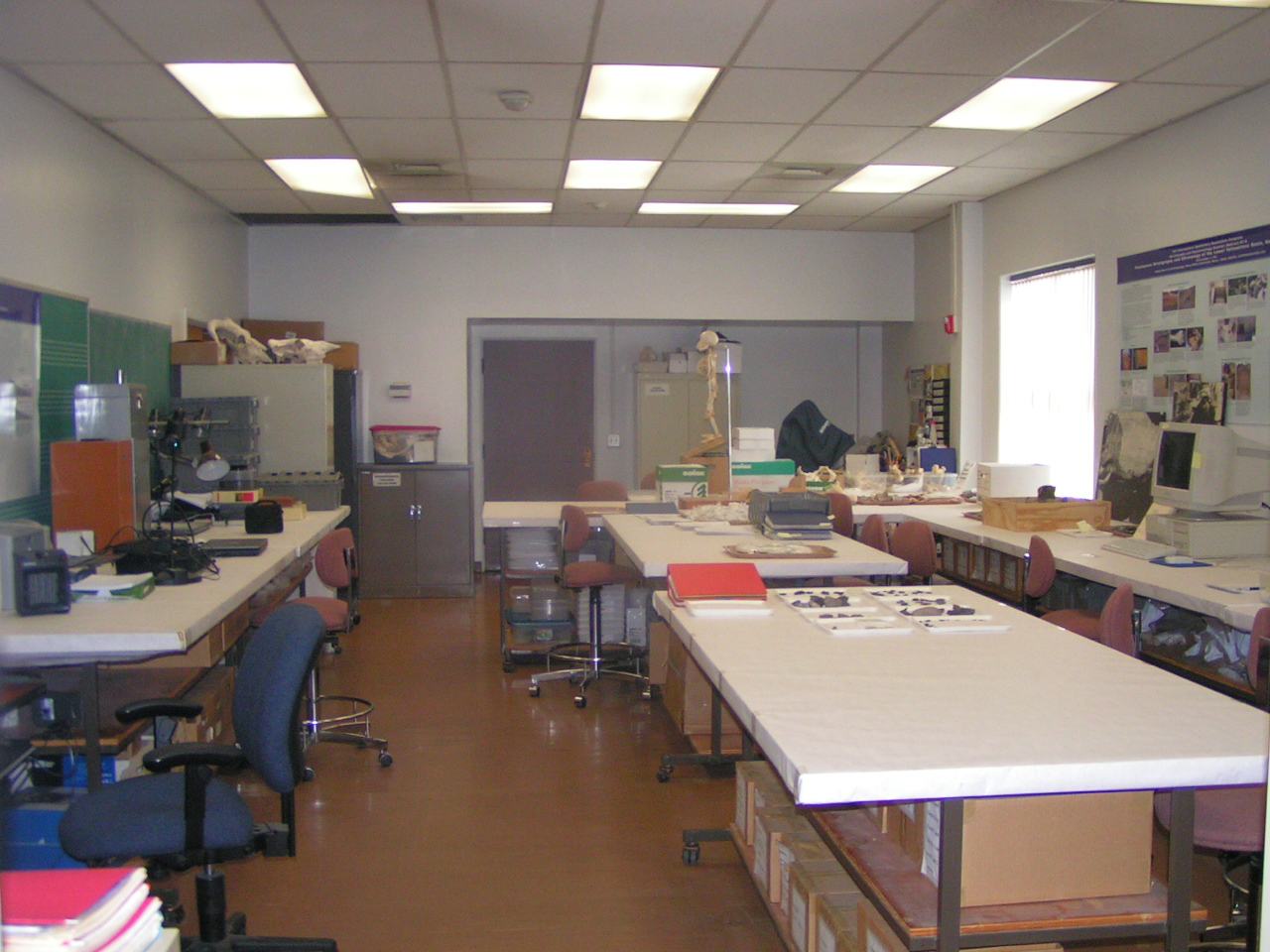 Photo of lab with artifacts layed out on the lab table.