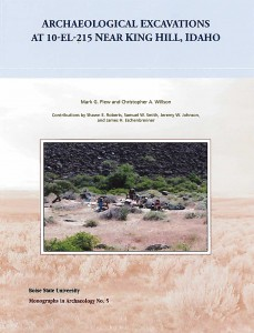 Excavations Near King Hill book cover
