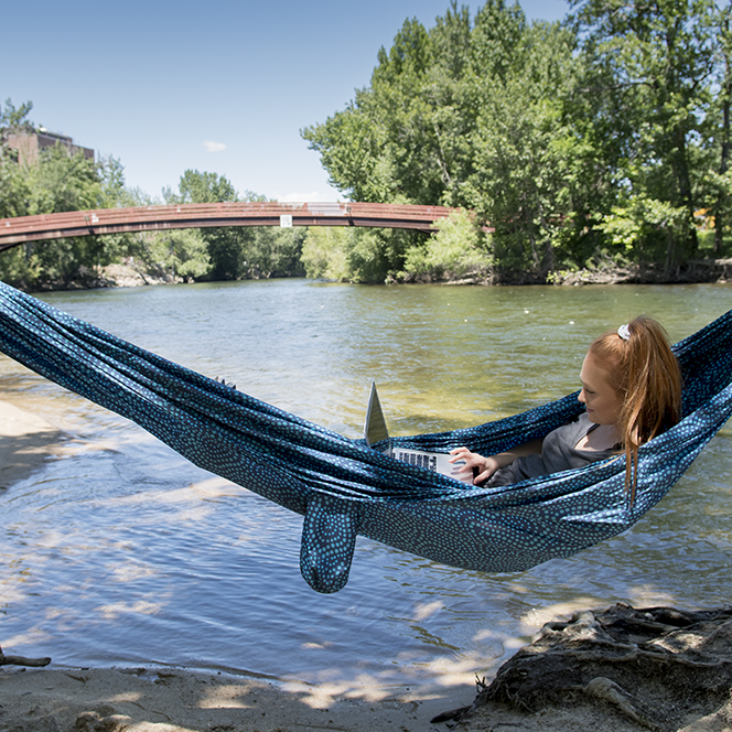 Student sitting in hammock by the river