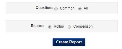 Questions and Reports Example