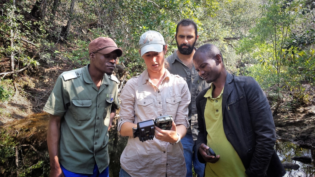 Field researchers looking at trail camera.