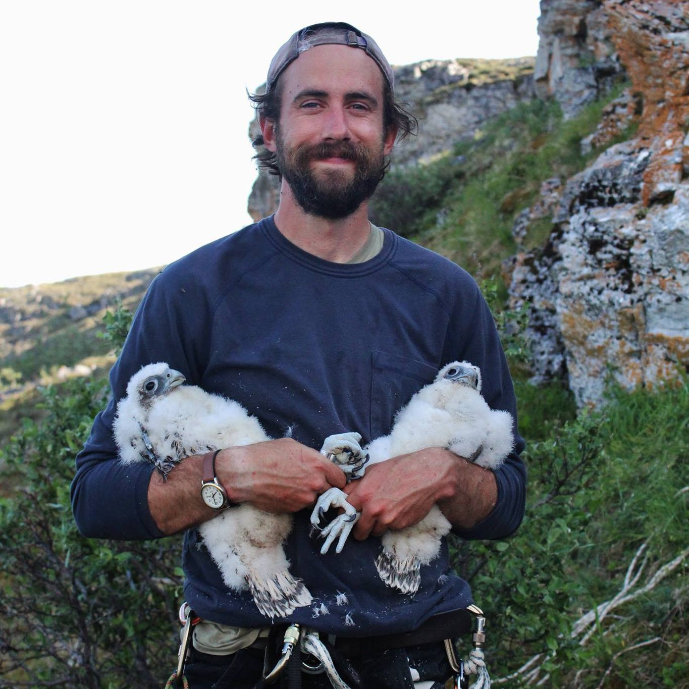 Photo of Bryce Robinson with immature Gyrfalcons