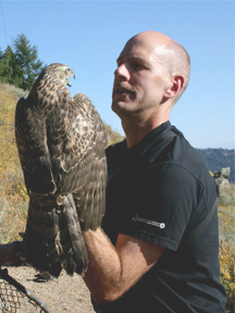 Photo of Rob Miller holding a Northern Goshawk. Photo courtesy of Rob Miller.