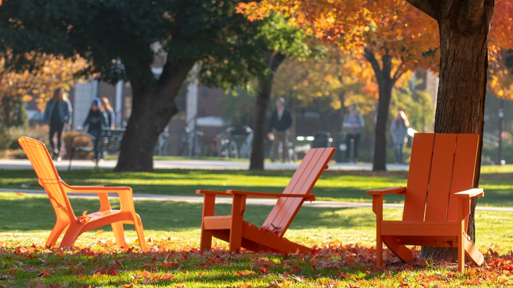 Orange chairs in fall leaves