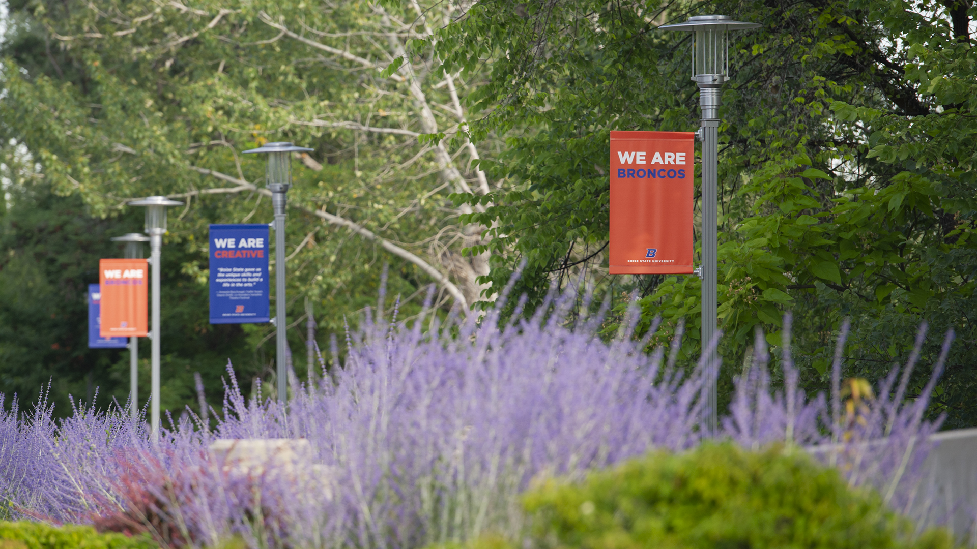 Campus Banners - We are Broncos, We are creative