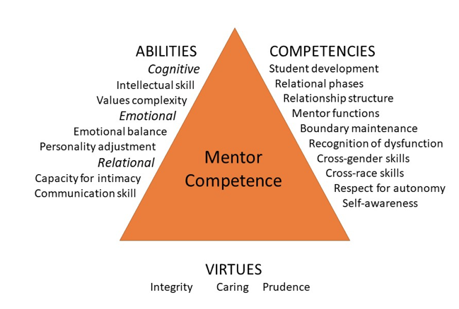 Triangular Model of Mentor Competence listing abilities, competencies, and virtues.