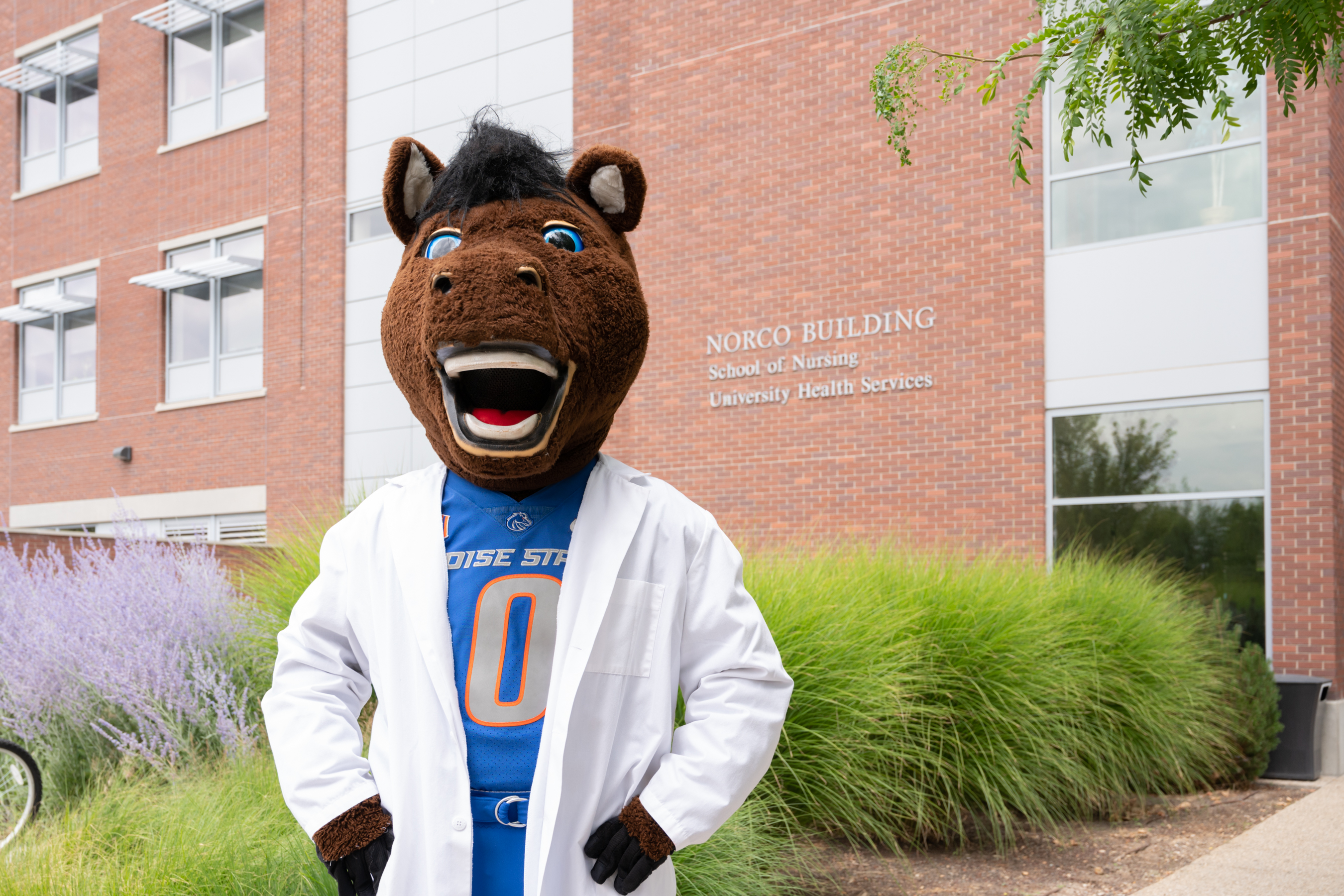Buster outside of the School of Nursing